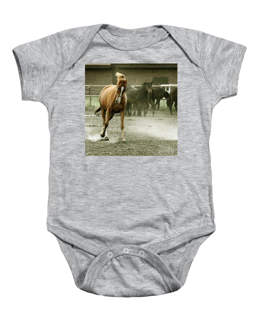 Paddock Baby Onesie featuring the photograph Dusty Paddock by Angel Tarantella