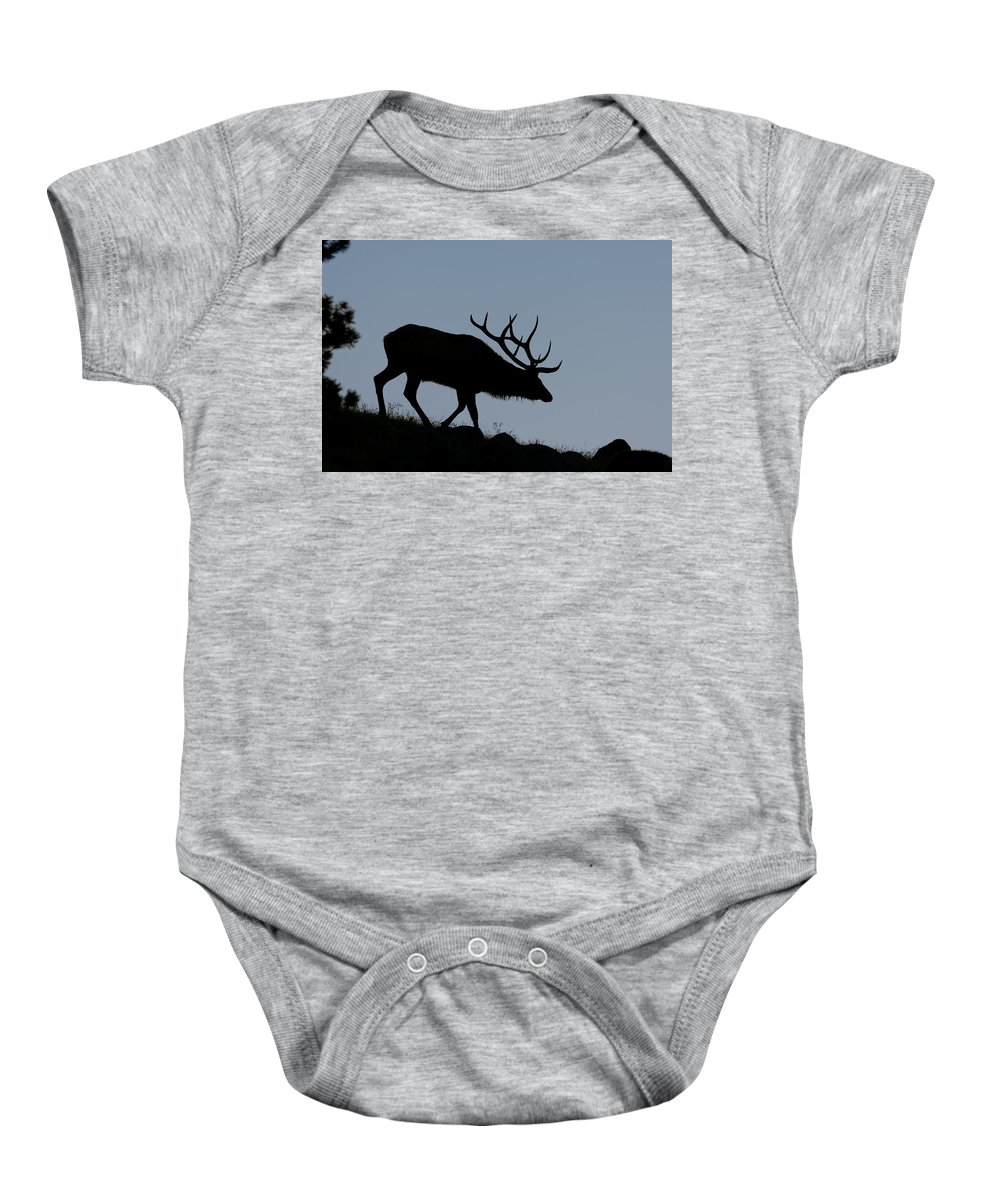 Early Morning Baby Onesie featuring the photograph Early Morning Bull Elk by Gary Langley