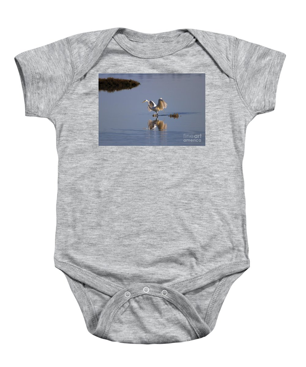 Egret Baby Onesie featuring the photograph Egret Reflections by Mike Dawson