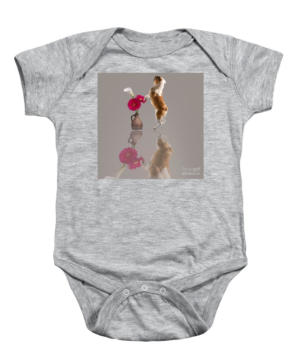 English Bulldog Baby Onesie featuring the photograph English Bulldog by Liane Wright