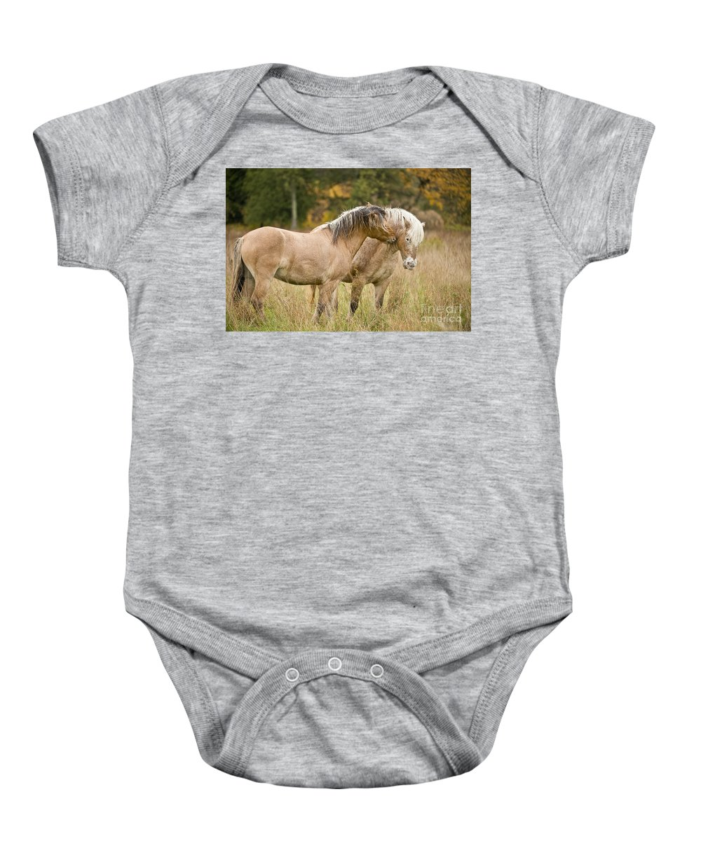 Michael Cummings Baby Onesie featuring the photograph Equine Love by Michael Cummings
