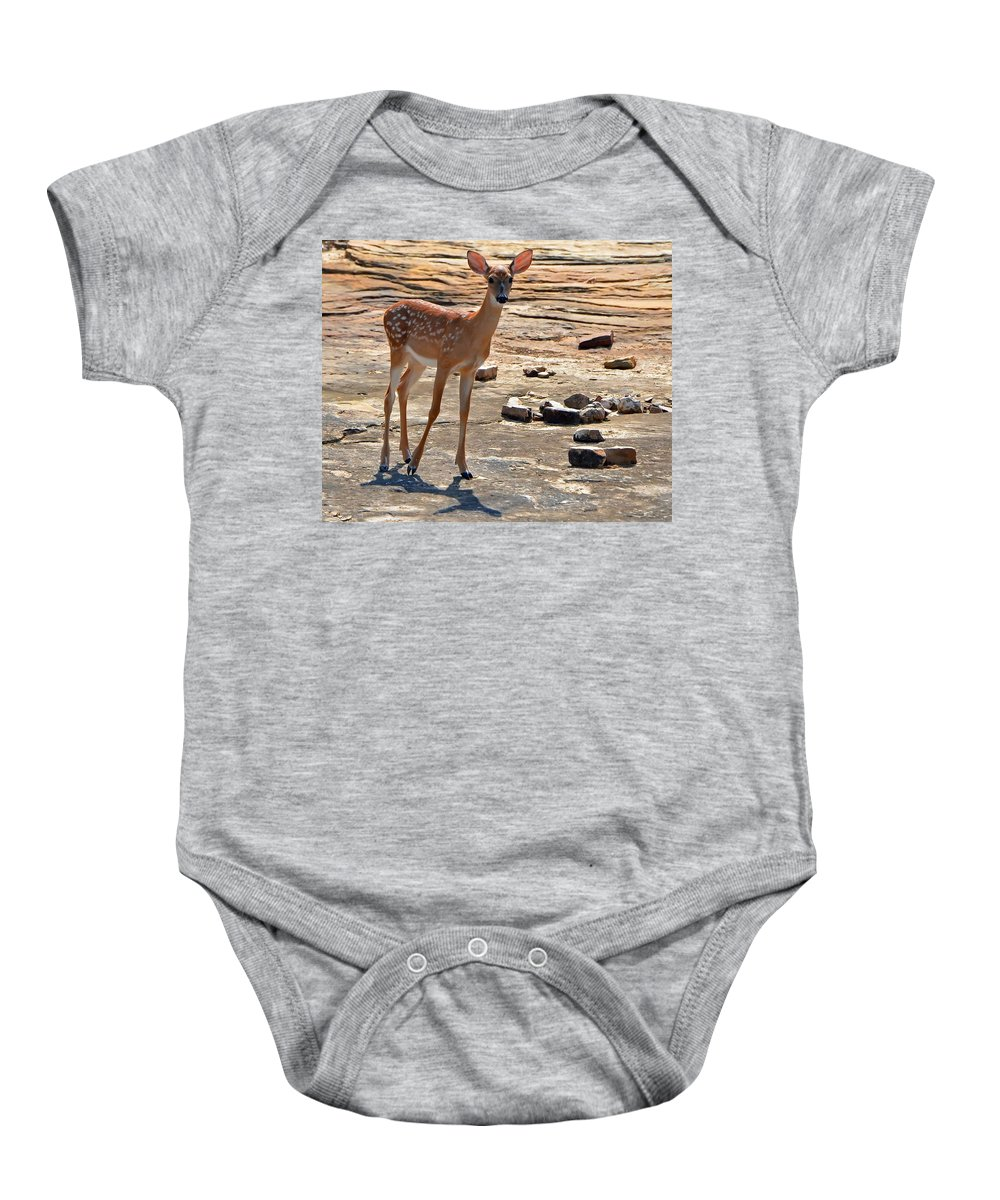 Deer Baby Onesie featuring the photograph Exploring by Charlotte Schafer