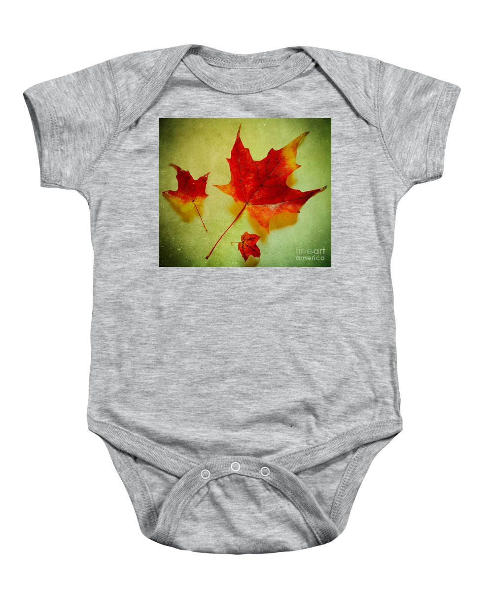 Autumn Baby Onesie featuring the photograph Fall Leaves by Inge Johnsson
