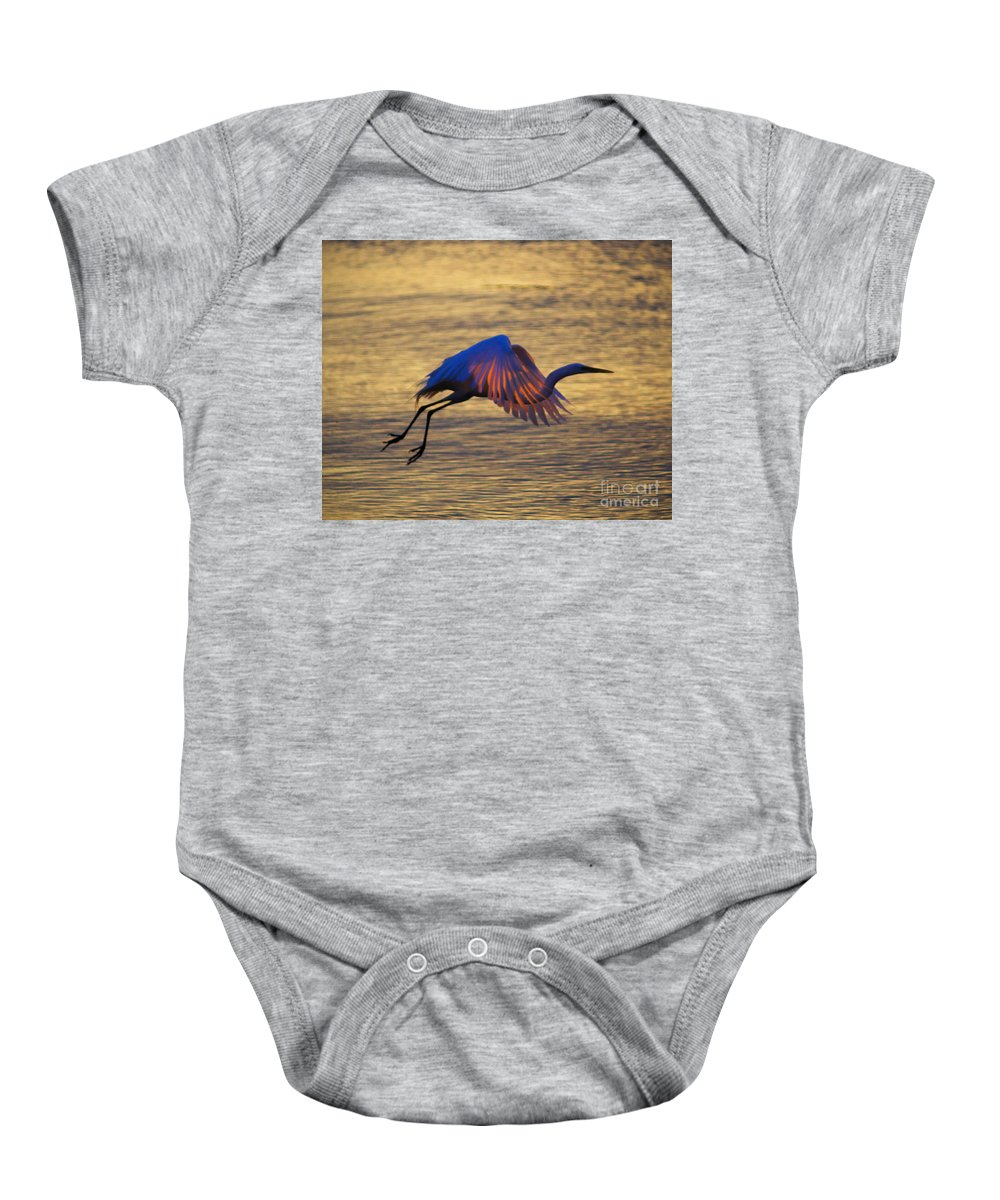Egret Baby Onesie featuring the photograph Feather-light by Joe Geraci
