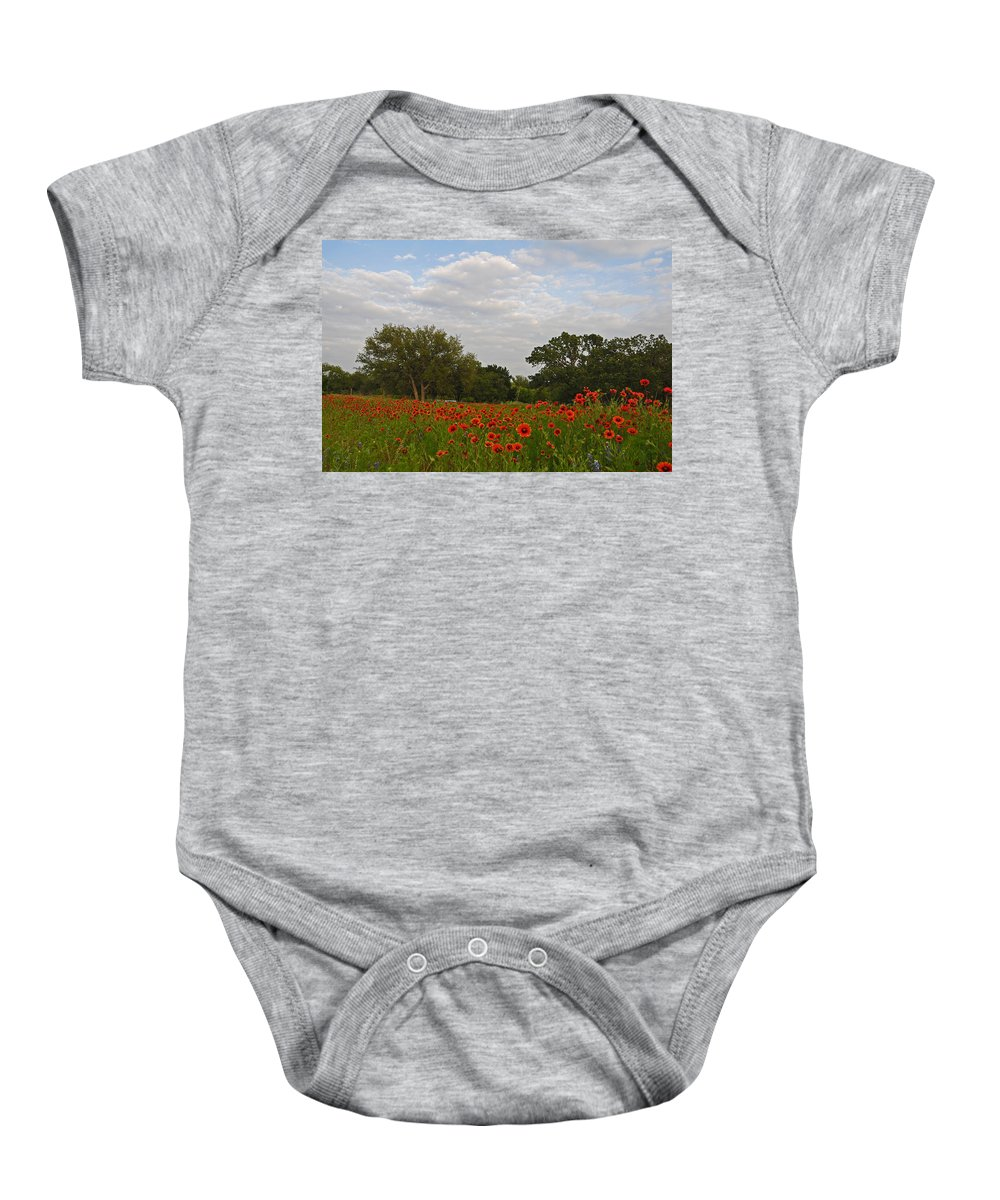 Wildflowers Baby Onesie featuring the photograph Firewheel Field by Lynn Bauer
