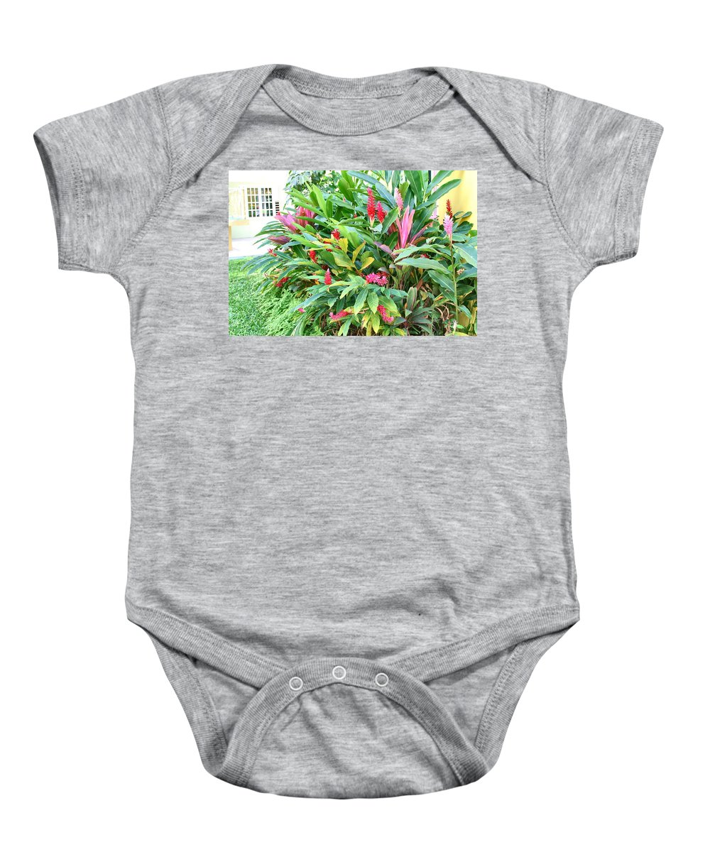 Tree Baby Onesie featuring the photograph Flowering Tree by Debbie Levene