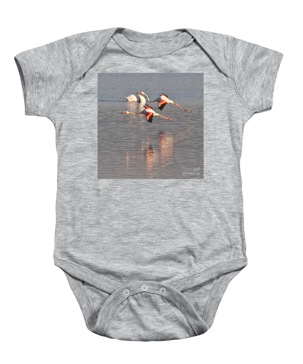 Heiko Baby Onesie featuring the photograph Flying Flamingos by Heiko Koehrer-Wagner