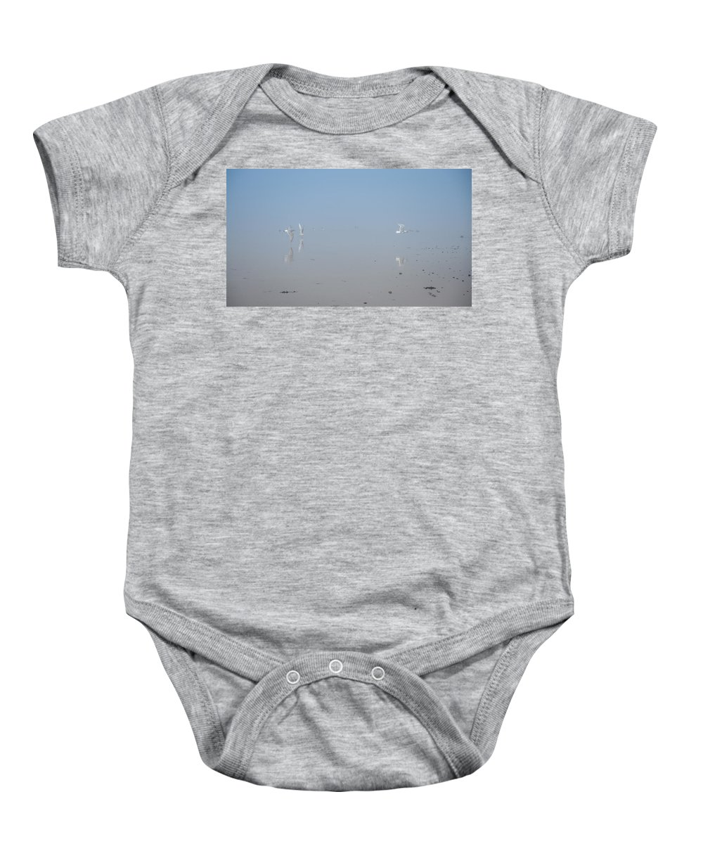 Fog Baby Onesie featuring the photograph Foggy Seabird Gathering Reflections by Roxy Hurtubise