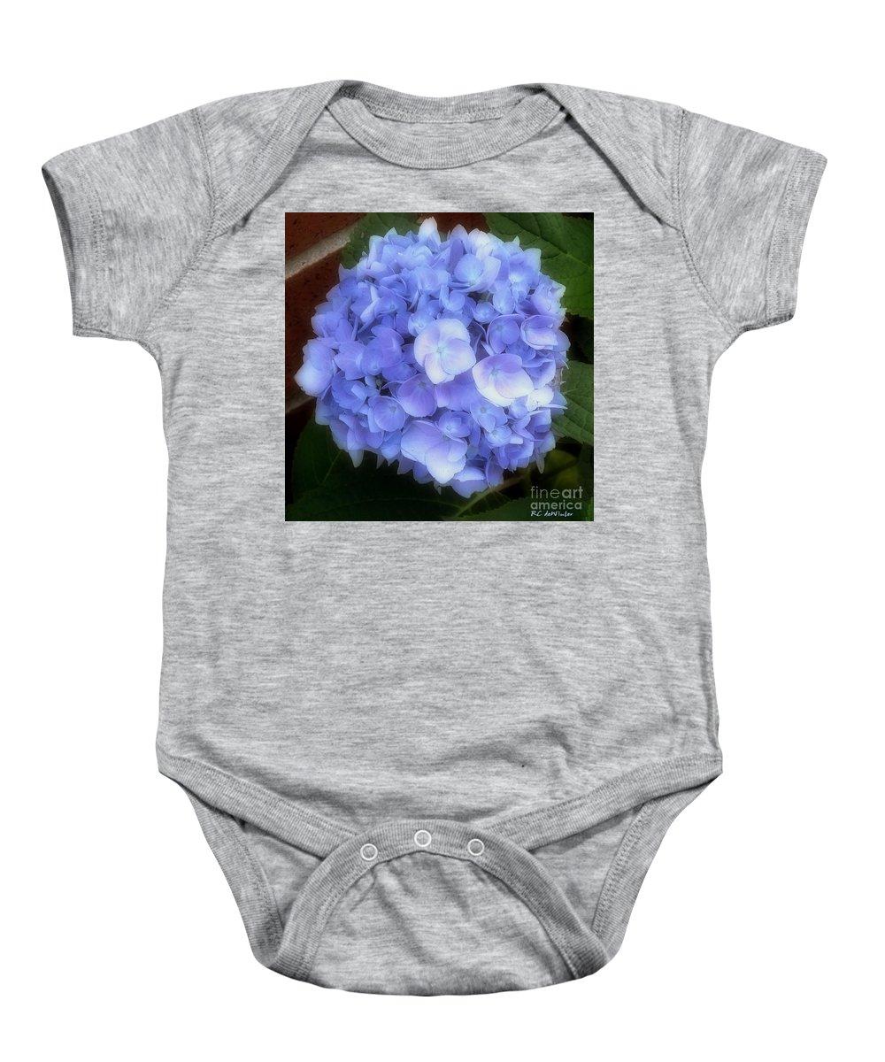 Hydrangea Baby Onesie featuring the photograph Gauzy Blues by RC DeWinter