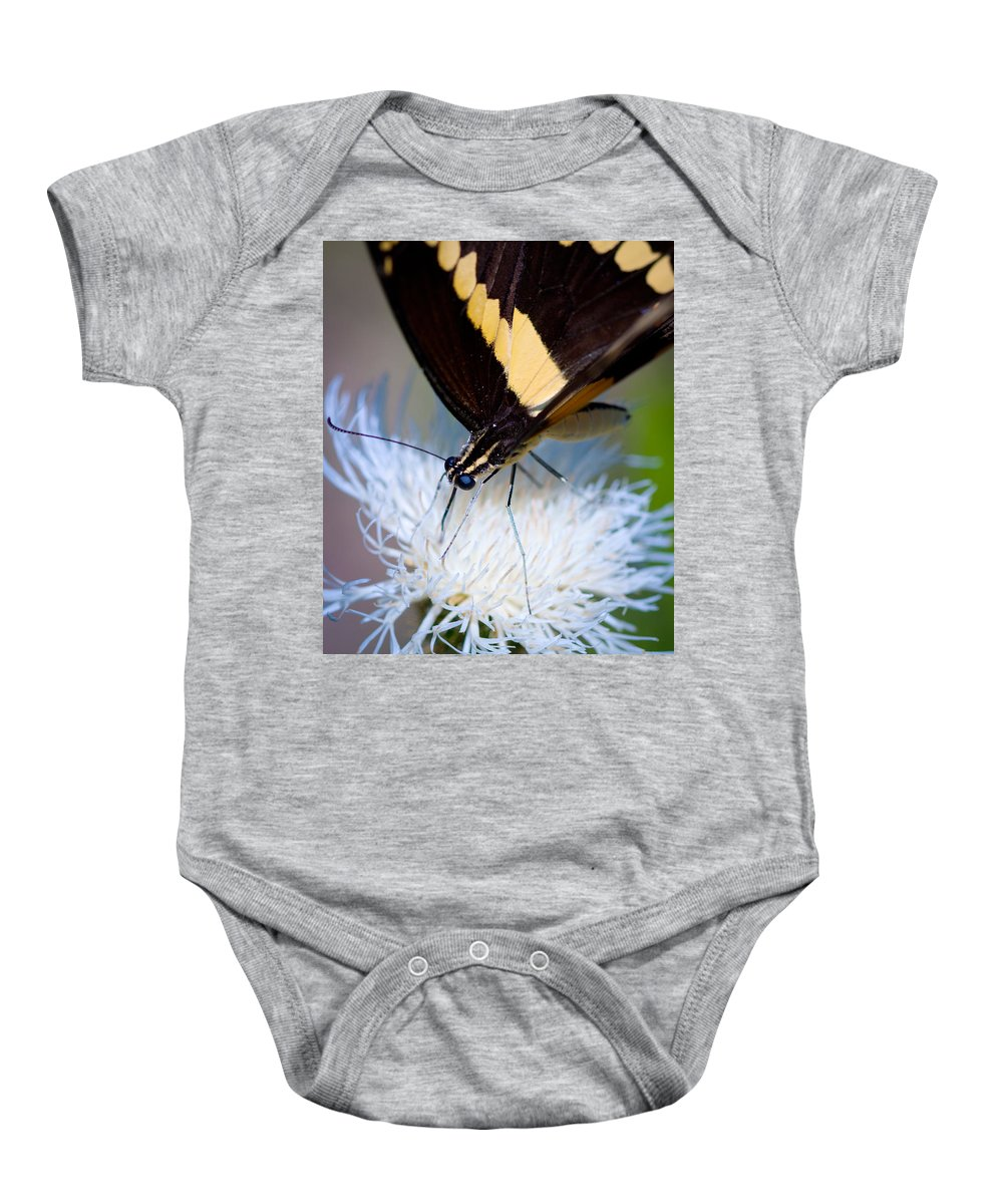Giant Swallowtail Butterfly Baby Onesie featuring the photograph Giant Swallowtail by Melinda Fawver