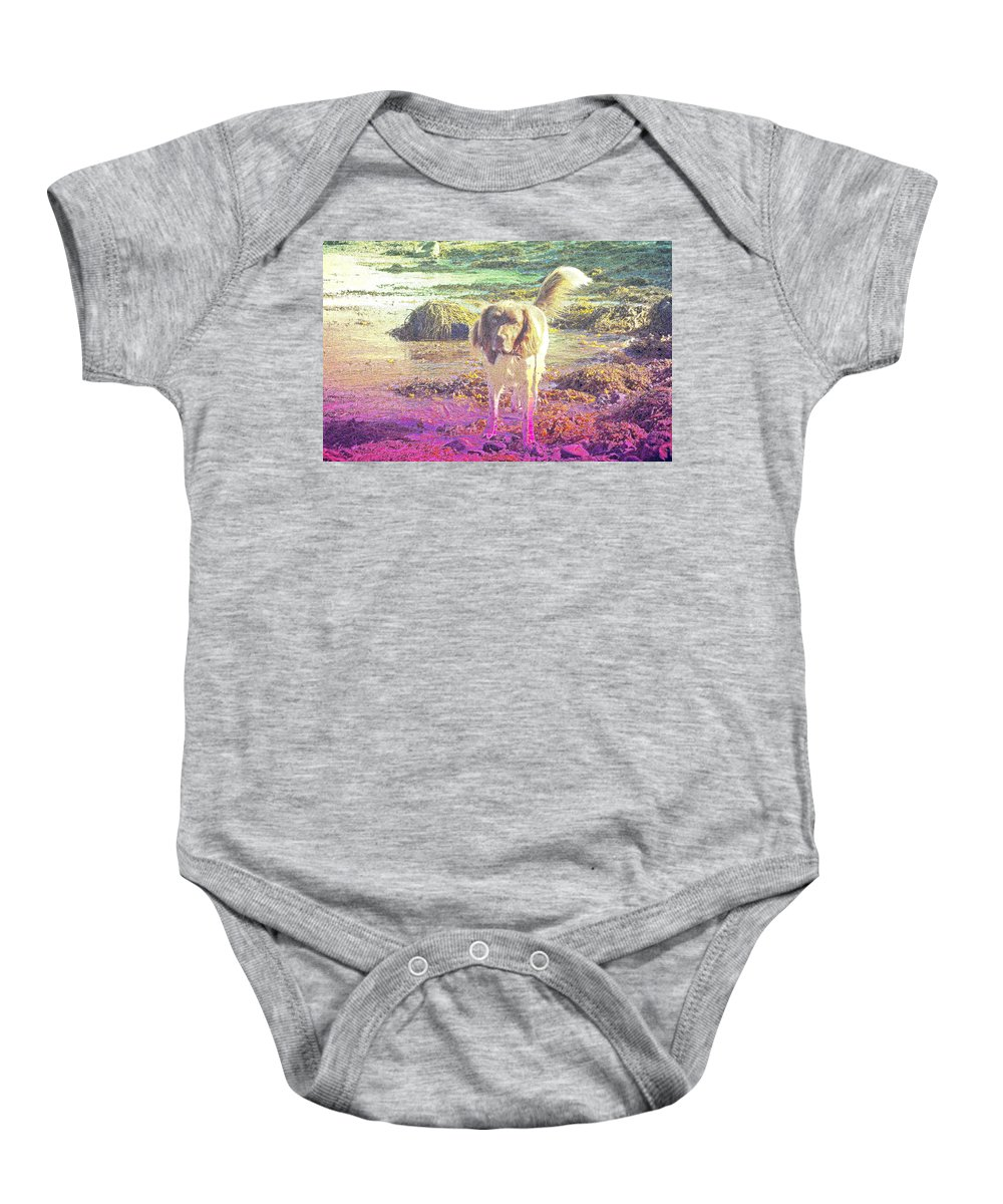 Dog Baby Onesie featuring the photograph One Day Wil Will Go Hunting For Something Valuable by Hilde Widerberg