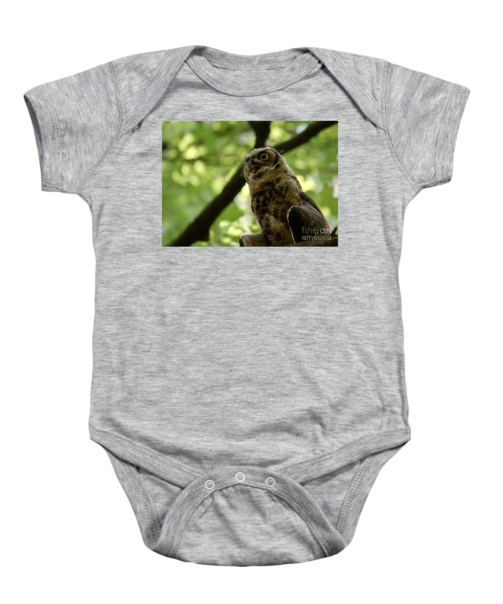 Owlets Baby Onesie featuring the photograph Great Horned Youngster by Cheryl Baxter