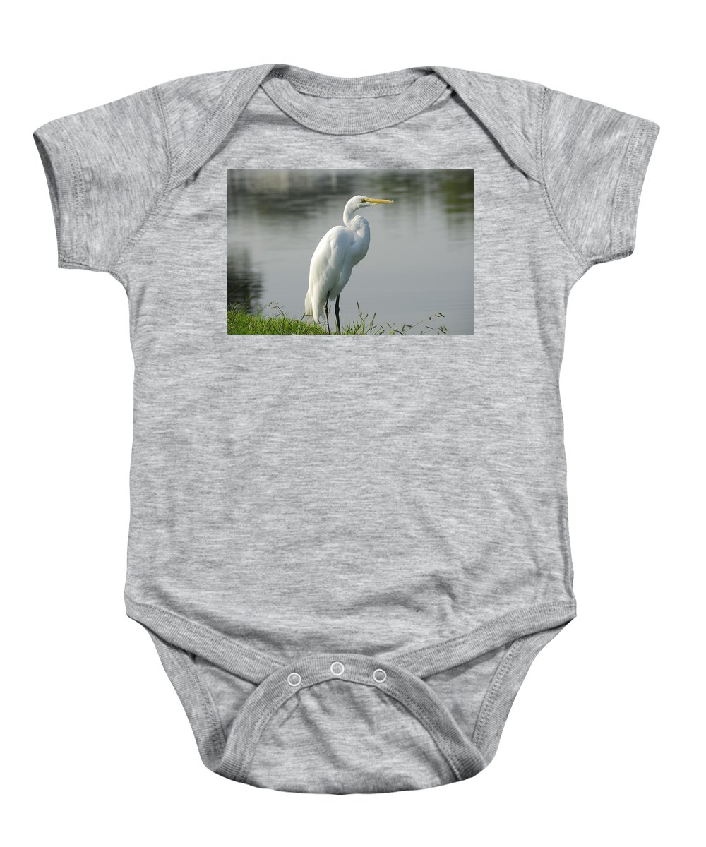 Egret Baby Onesie featuring the photograph Great White Egret by Charles Beeler