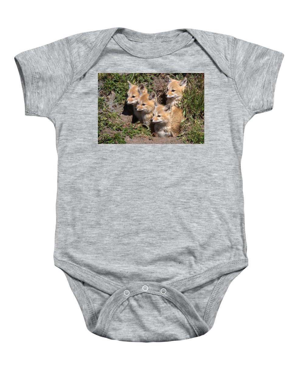 Chile Baby Onesie featuring the photograph Grey Foxes At Den by David Beebe