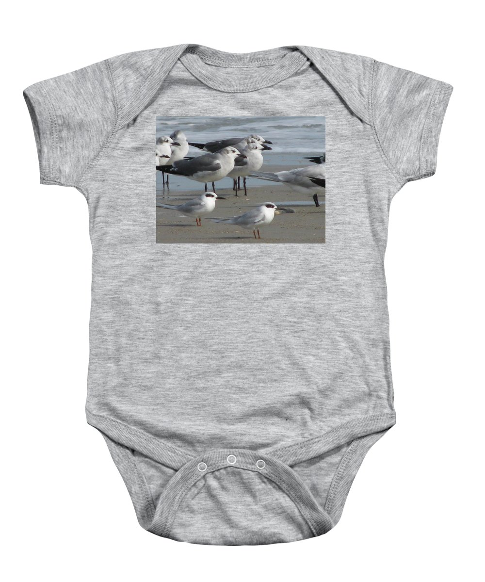Landscape Baby Onesie featuring the photograph Gulls And Terns by Ellen Meakin