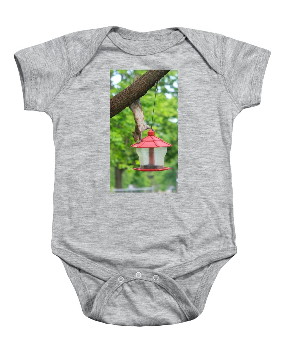Hanging Squirrel Baby Onesie featuring the photograph Hanging Squirrel by Amanda Stadther