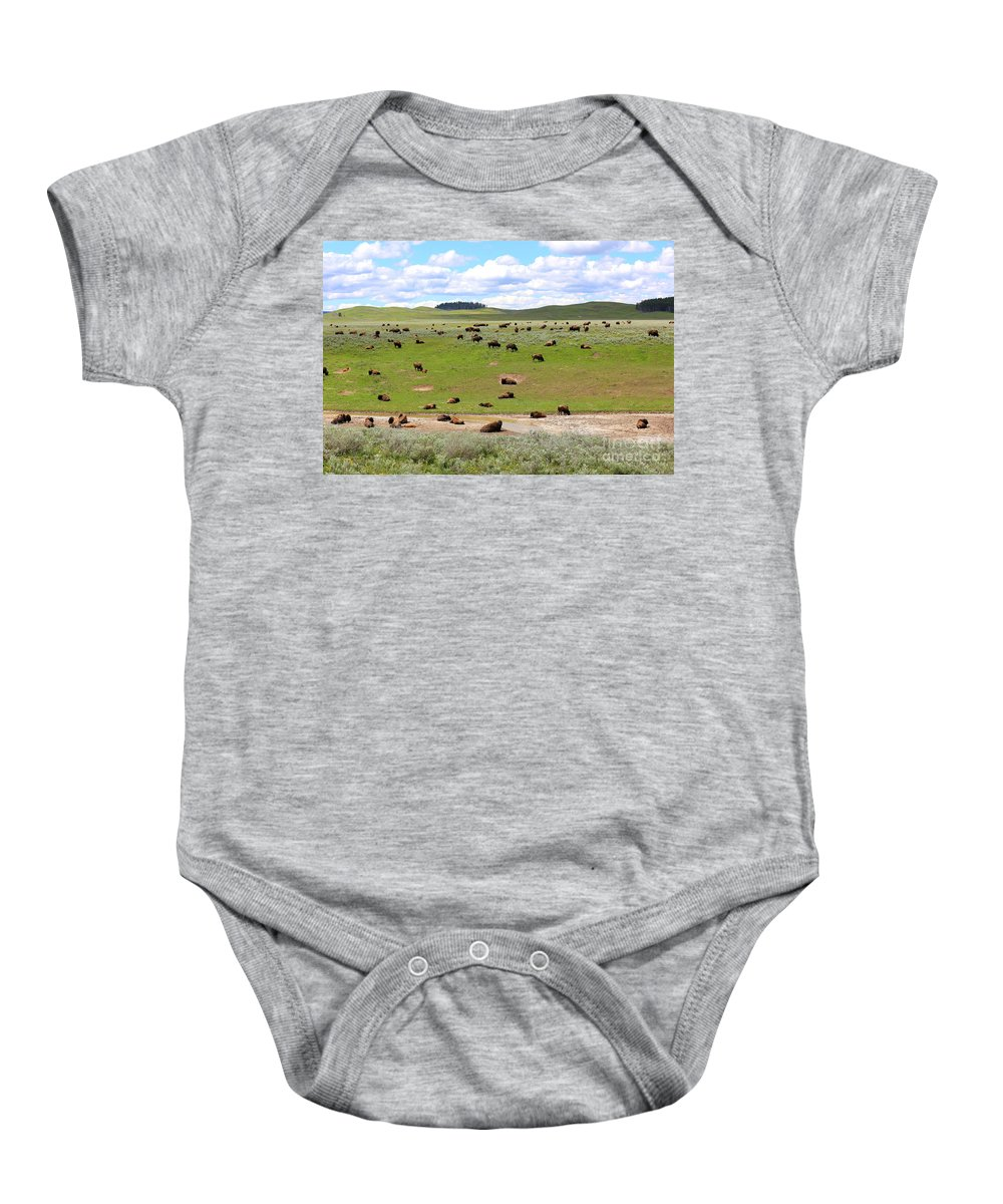 Buffalo Baby Onesie featuring the photograph Home On The Range by Carol Groenen