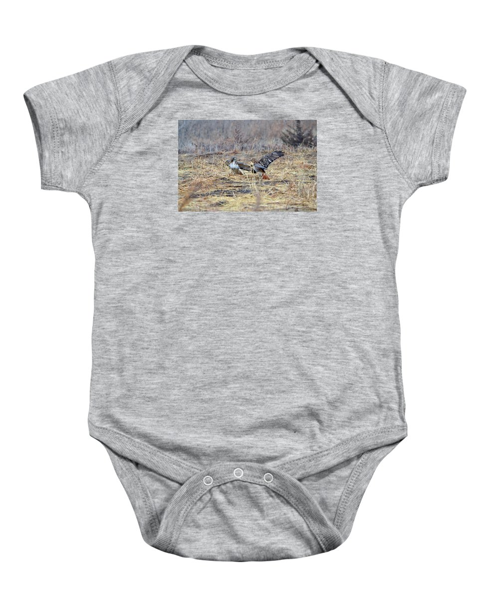 Red Tailed Hawks Baby Onesie featuring the photograph It's Mine by Audie T Photography