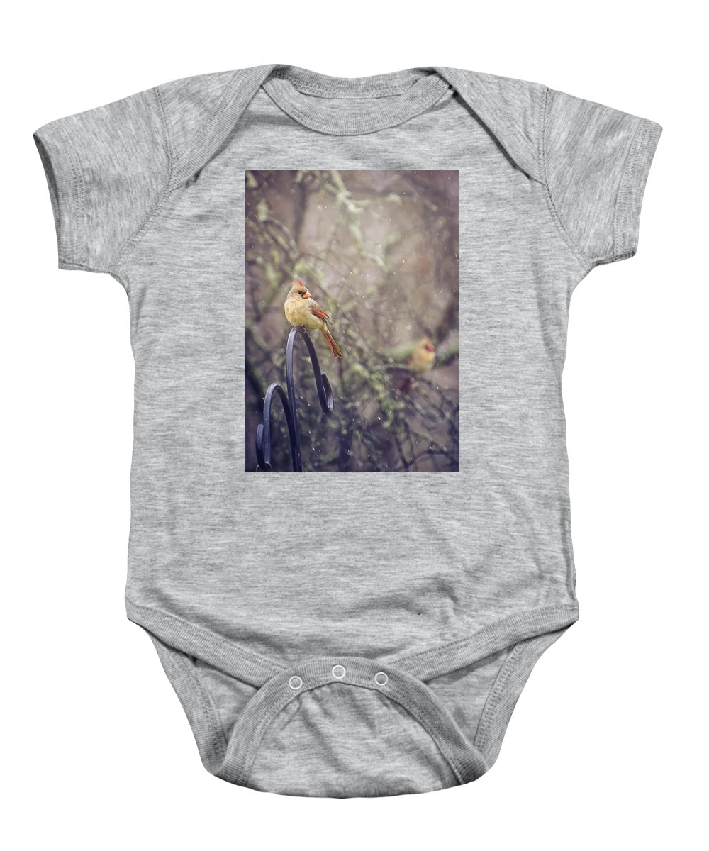Cardinal Baby Onesie featuring the photograph January Cardinals by Heather Applegate