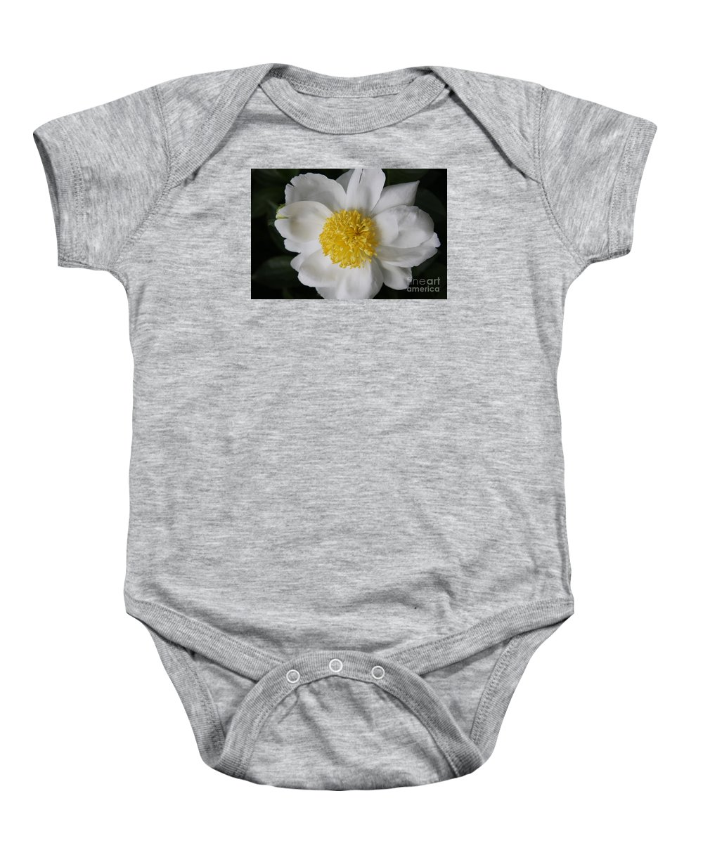 Peony Baby Onesie featuring the photograph Just White by Christiane Schulze Art And Photography