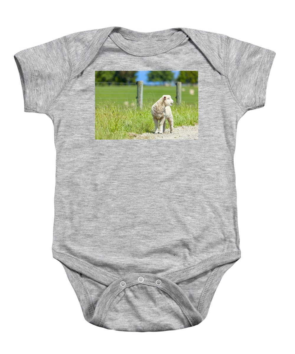 Sheep Baby Onesie featuring the photograph Lamb On The Farm by Alexey Stiop
