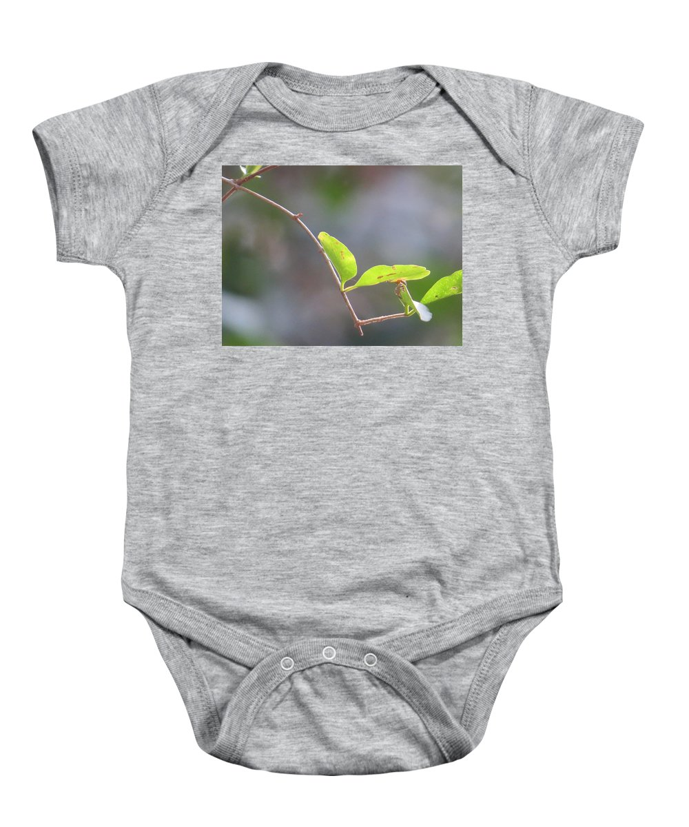 Outdoors Baby Onesie featuring the photograph Leaf by Aaron Martens