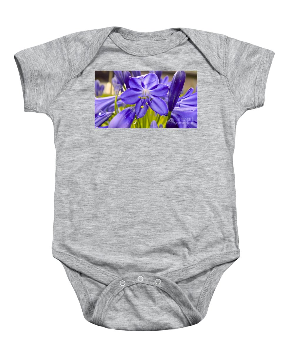 Flowers Baby Onesie featuring the photograph Lilly Of The Nile by Cheryl Cutler