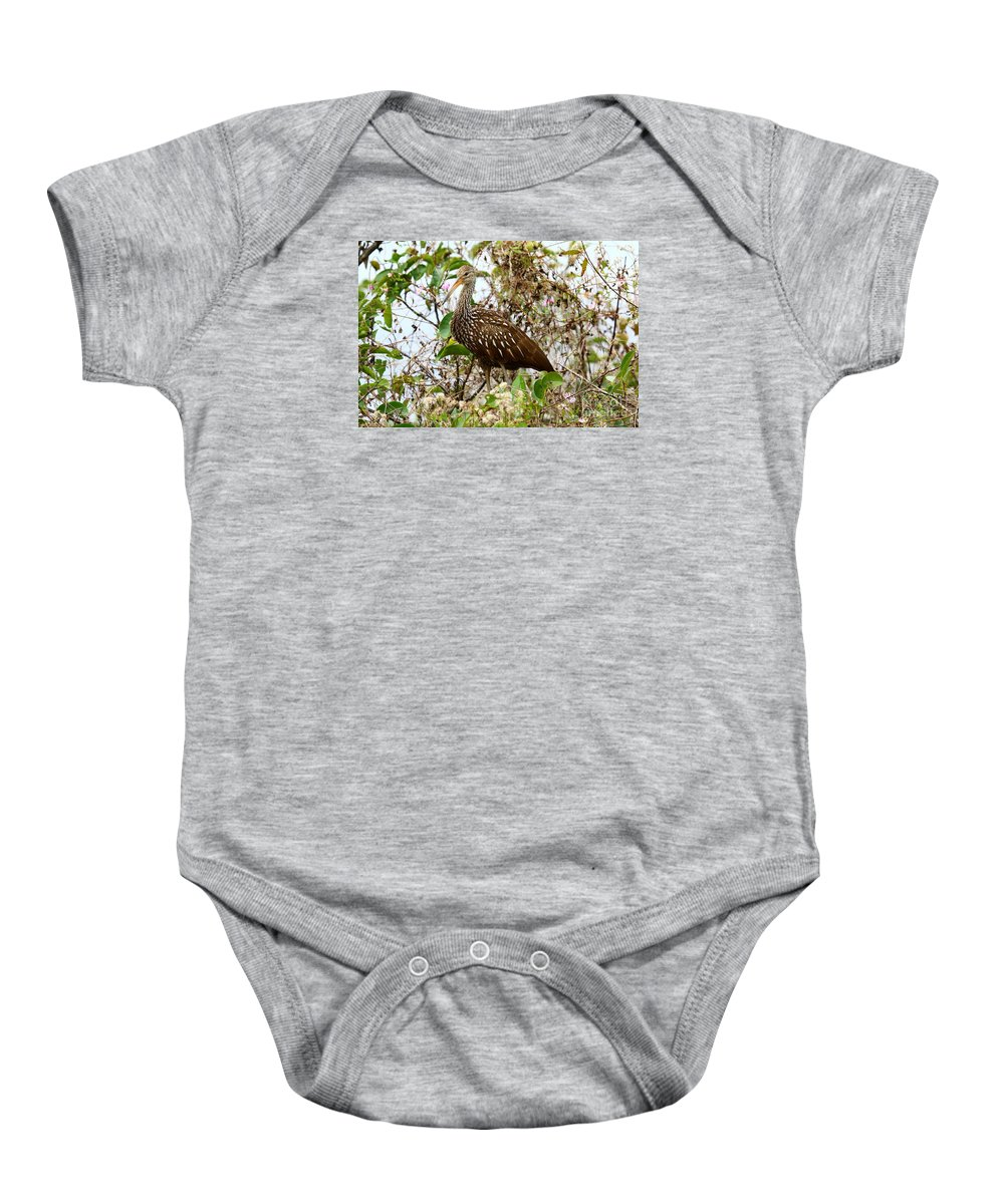 Limpkin Baby Onesie featuring the photograph Limpkin In A Tree by Christiane Schulze Art And Photography