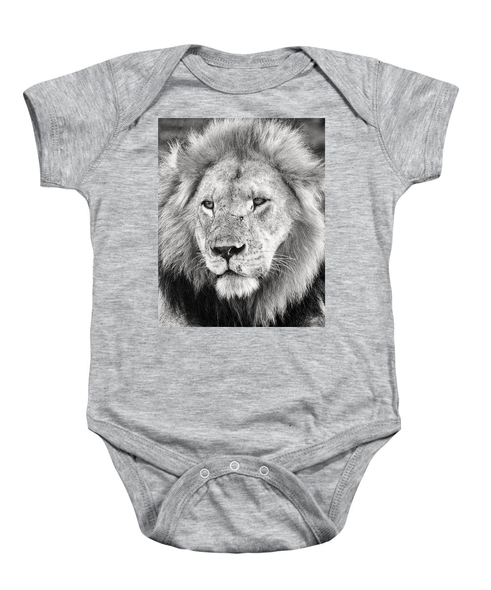 3scape Baby Onesie featuring the photograph Lion King by Adam Romanowicz