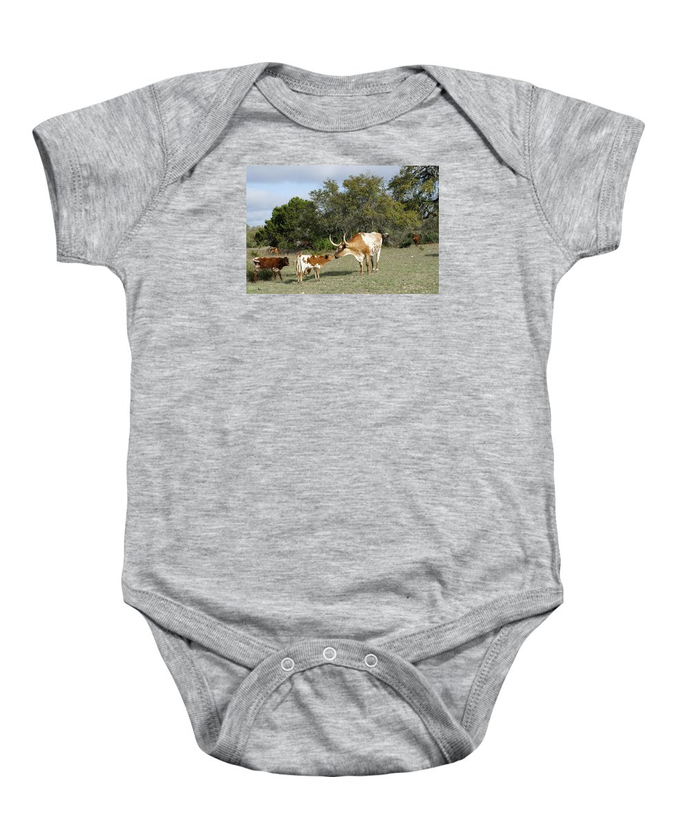 Longhorn Cattle Baby Onesie featuring the photograph Longhorn Love by Bill Morgenstern