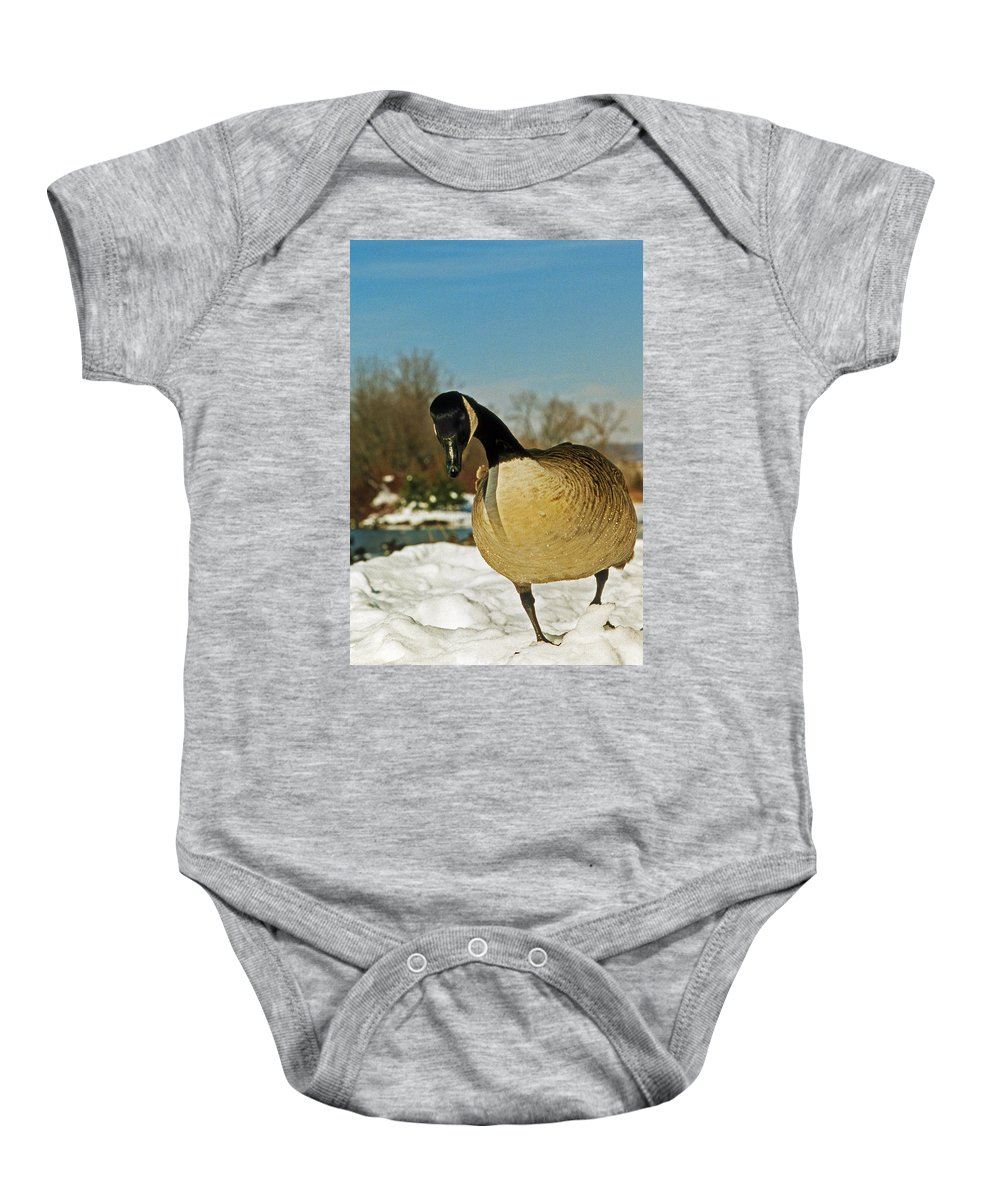 Nature Baby Onesie featuring the photograph Lookit Here by Skip Willits