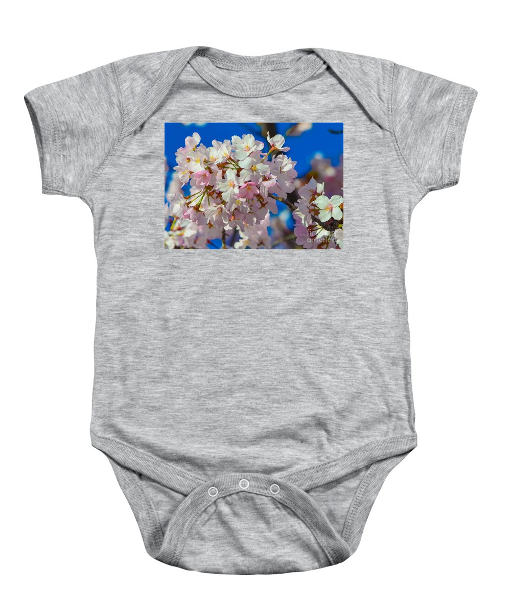 2012 Centennial Celebration Baby Onesie featuring the photograph Macro Dc Cherry Blooms by Jeff at JSJ Photography