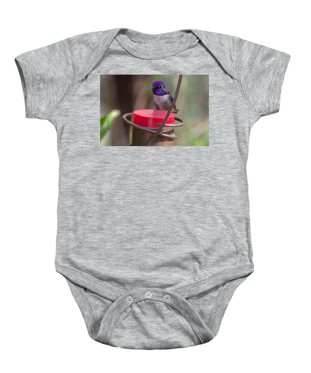 Male Baby Onesie featuring the photograph Male Costa Hummingbird by Michael Moriarty