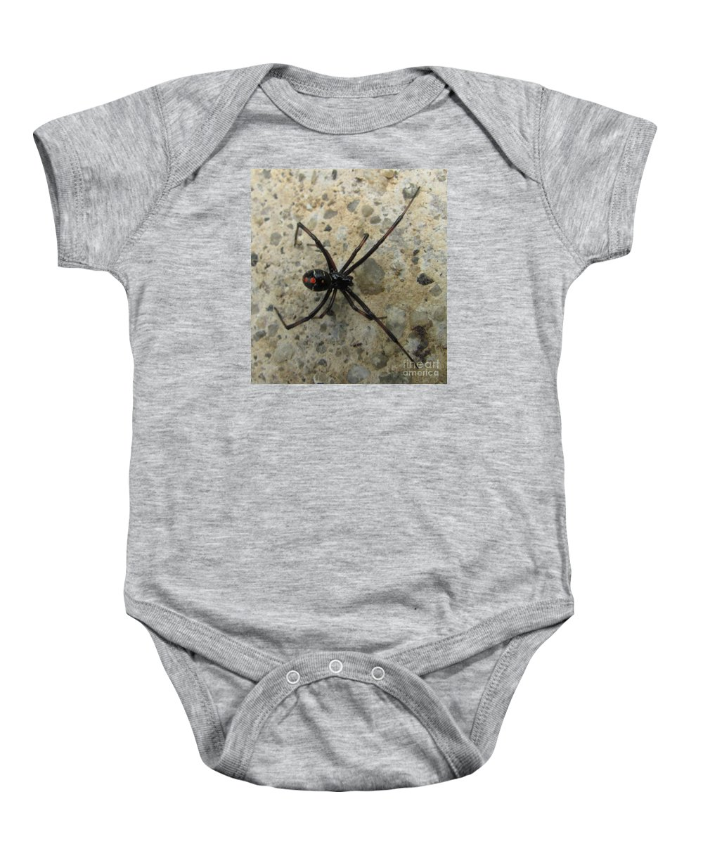 Maryland Black Widow Spider Images Photograph Prints Venomous Spider Images Deadly Spider Photograph Prints Poisonous Spider Prints Critter Prints Killer Spider Prints Baby Onesie featuring the photograph Maryland Black Widow by Joshua Bales