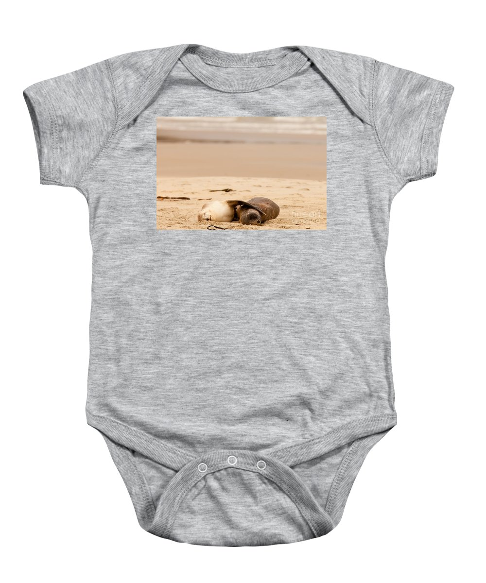 South Island Baby Onesie featuring the photograph Mating Hookers Sealions Taking A Nap On Beach by Stephan Pietzko