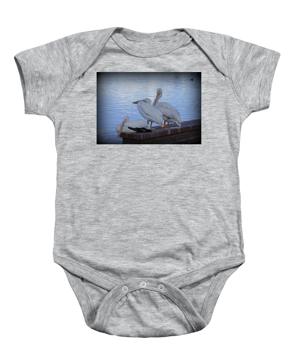 Pelican Baby Onesie featuring the photograph Moe Larry And Curly by Laurie Perry