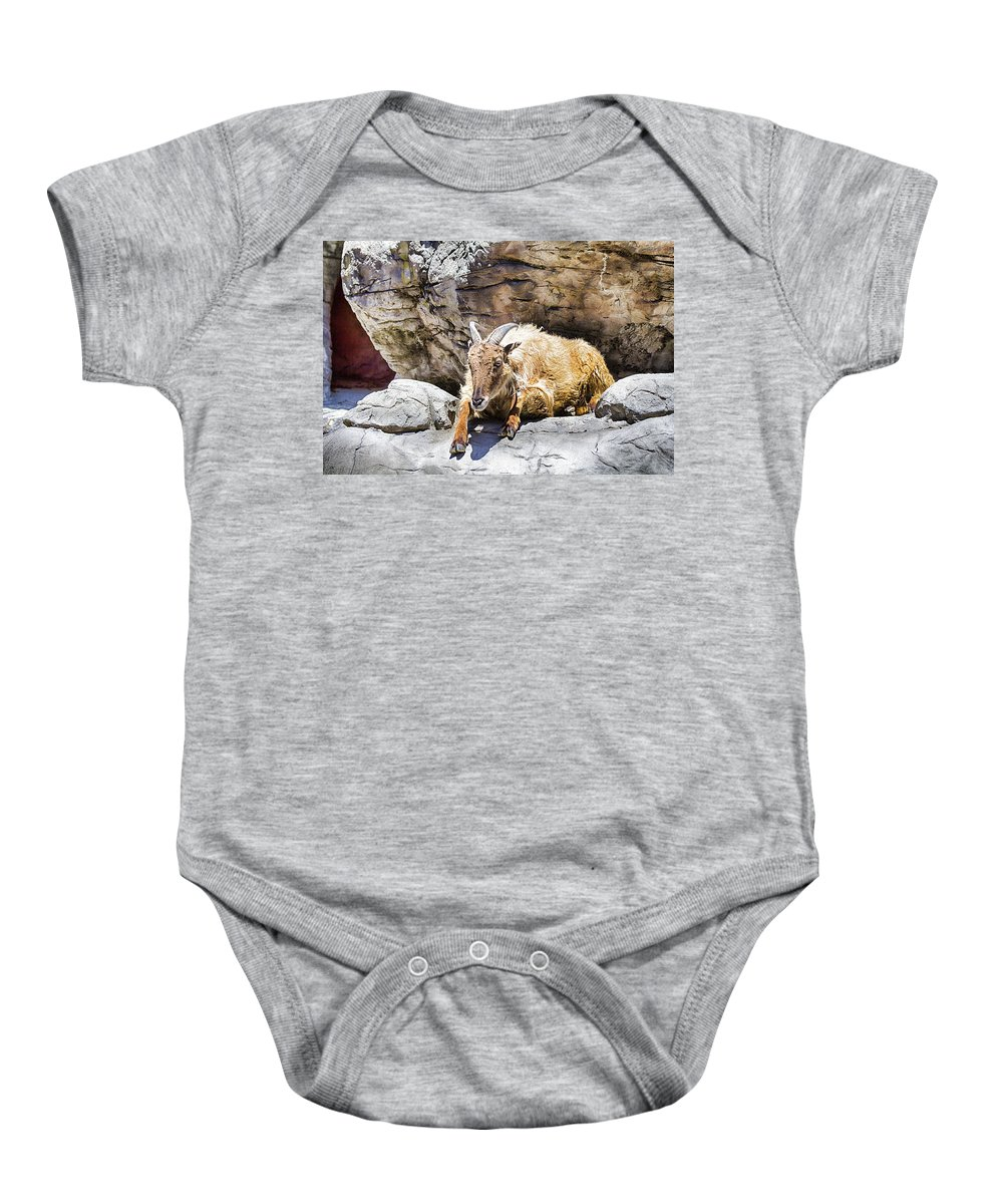 Mountain Goat Baby Onesie featuring the photograph Mountain Goat by Douglas Barnard