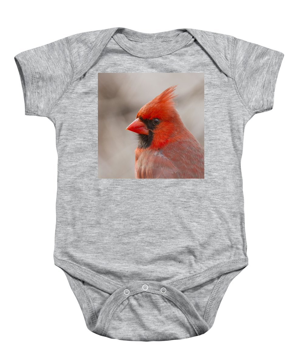 Red Baby Onesie featuring the photograph Mr Cardinal Portrait by Mircea Costina Photography