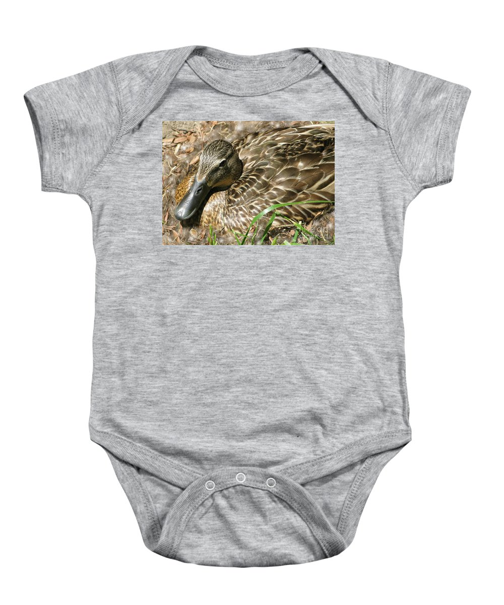 Mallard Baby Onesie featuring the photograph Nesting Mallard by Ann Horn