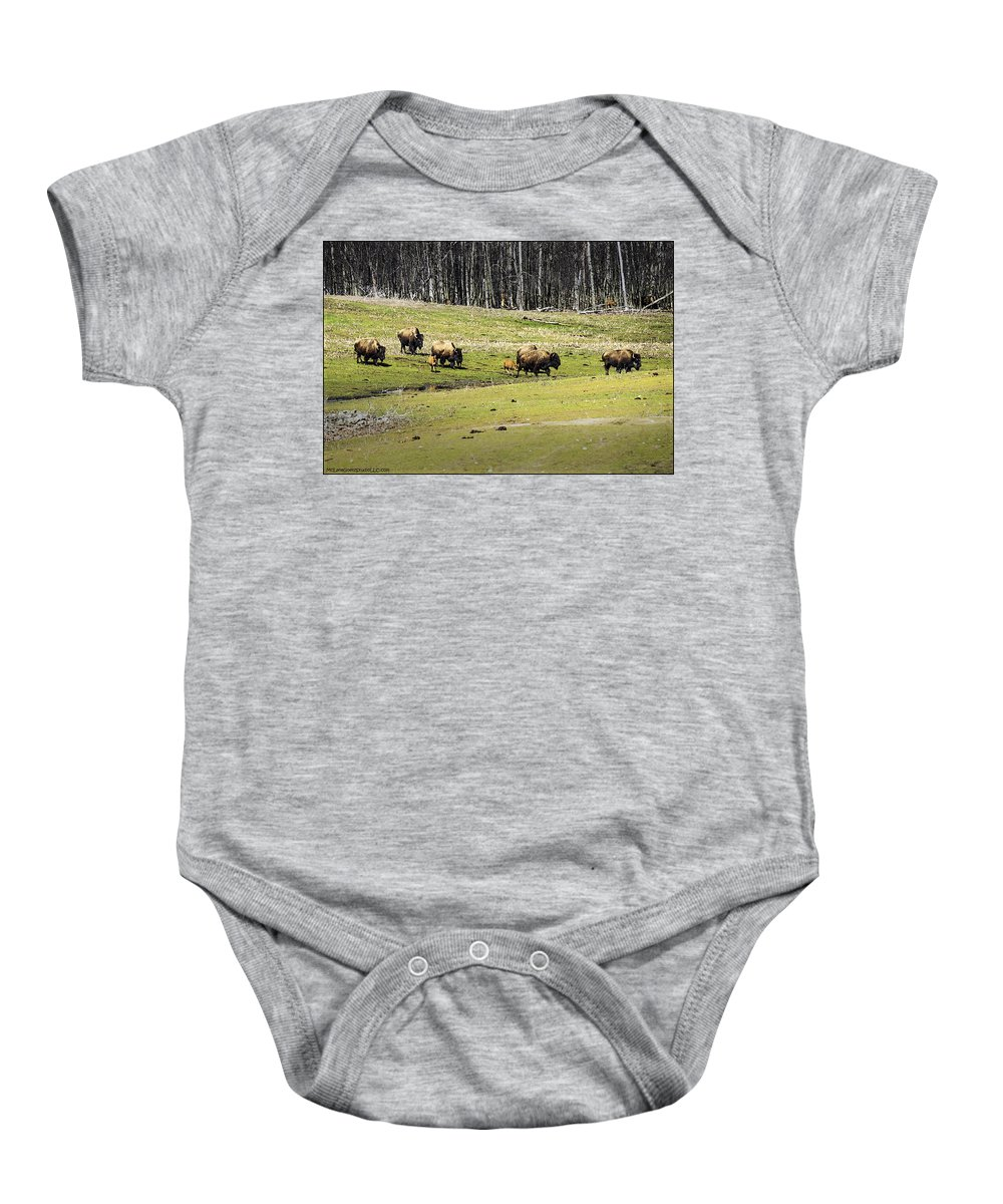 Buffalo Baby Onesie featuring the photograph Oh Give Me A Home Where The Buffalo Roam by LeeAnn McLaneGoetz McLaneGoetzStudioLLCcom