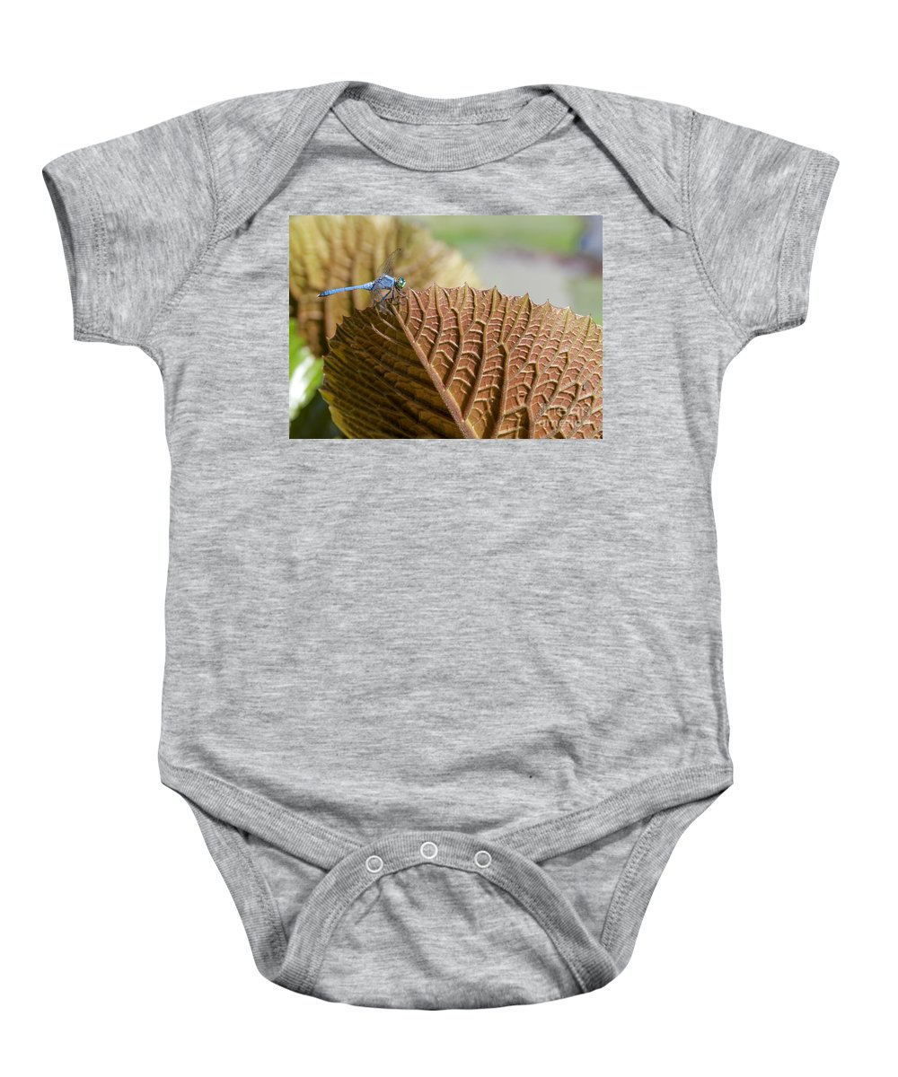 Landscape Baby Onesie featuring the photograph On The Edge by Sabrina L Ryan