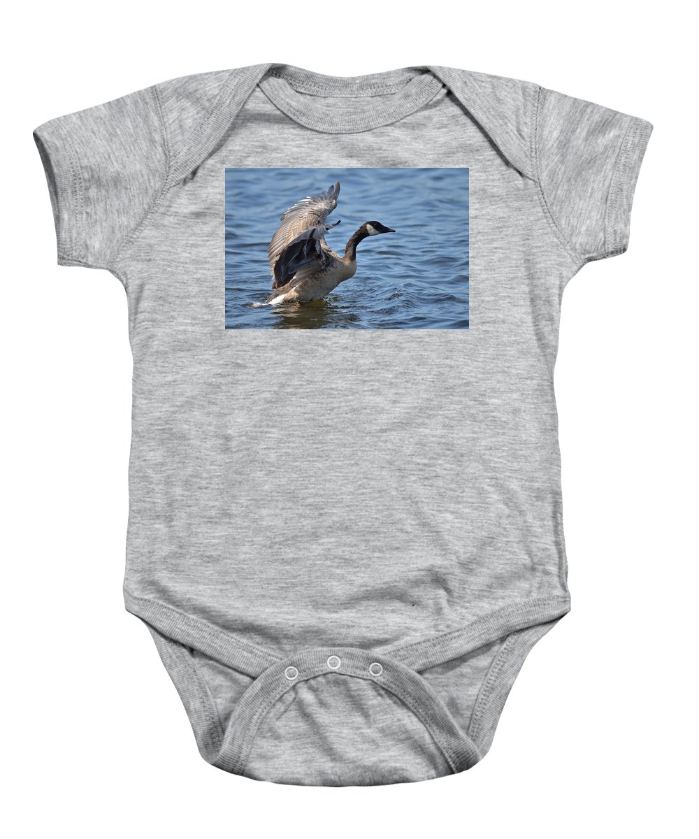 Outdoor Baby Onesie featuring the photograph On The Water by David Porteus