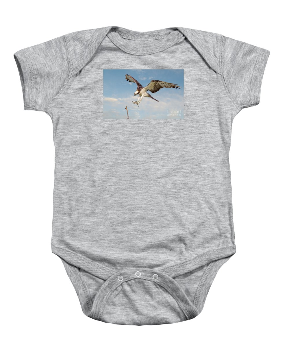 Osprey Baby Onesie featuring the photograph Osprey With Talons Extended by Jerry Fornarotto
