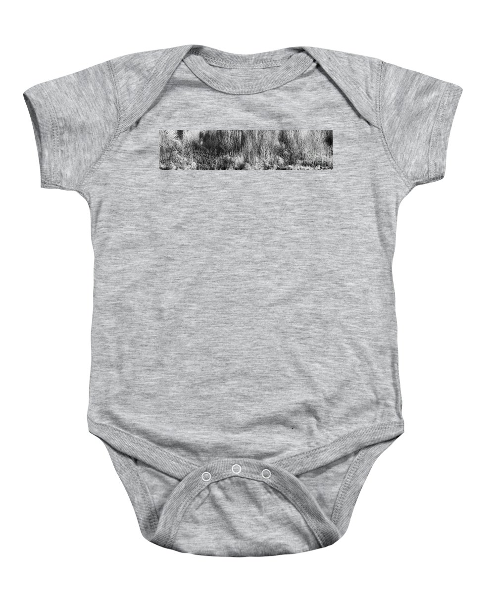 Roena King Baby Onesie featuring the photograph Panorama Winter Trees B And W by Roena King
