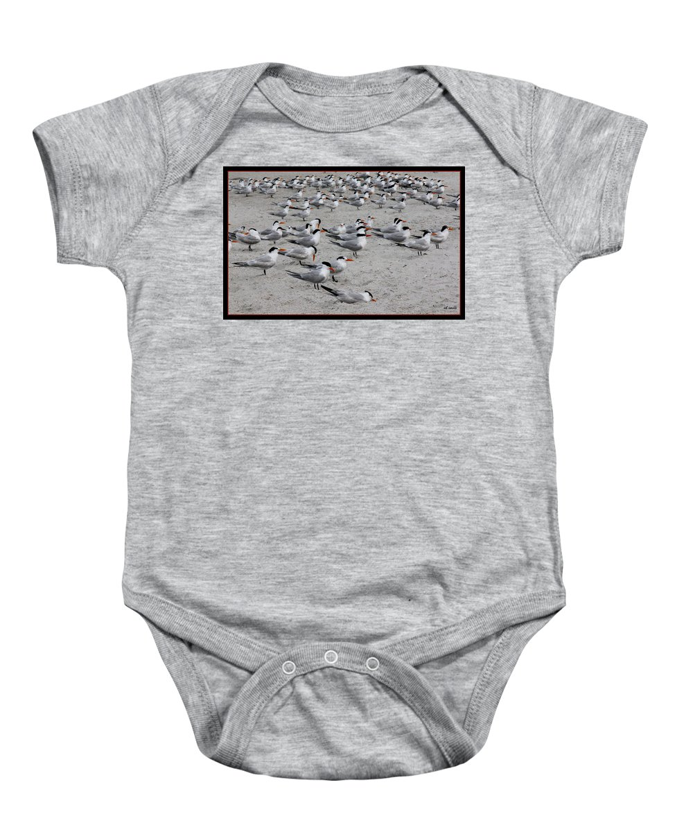 Party Pooper Baby Onesie featuring the photograph Party Pooper by Ed Smith