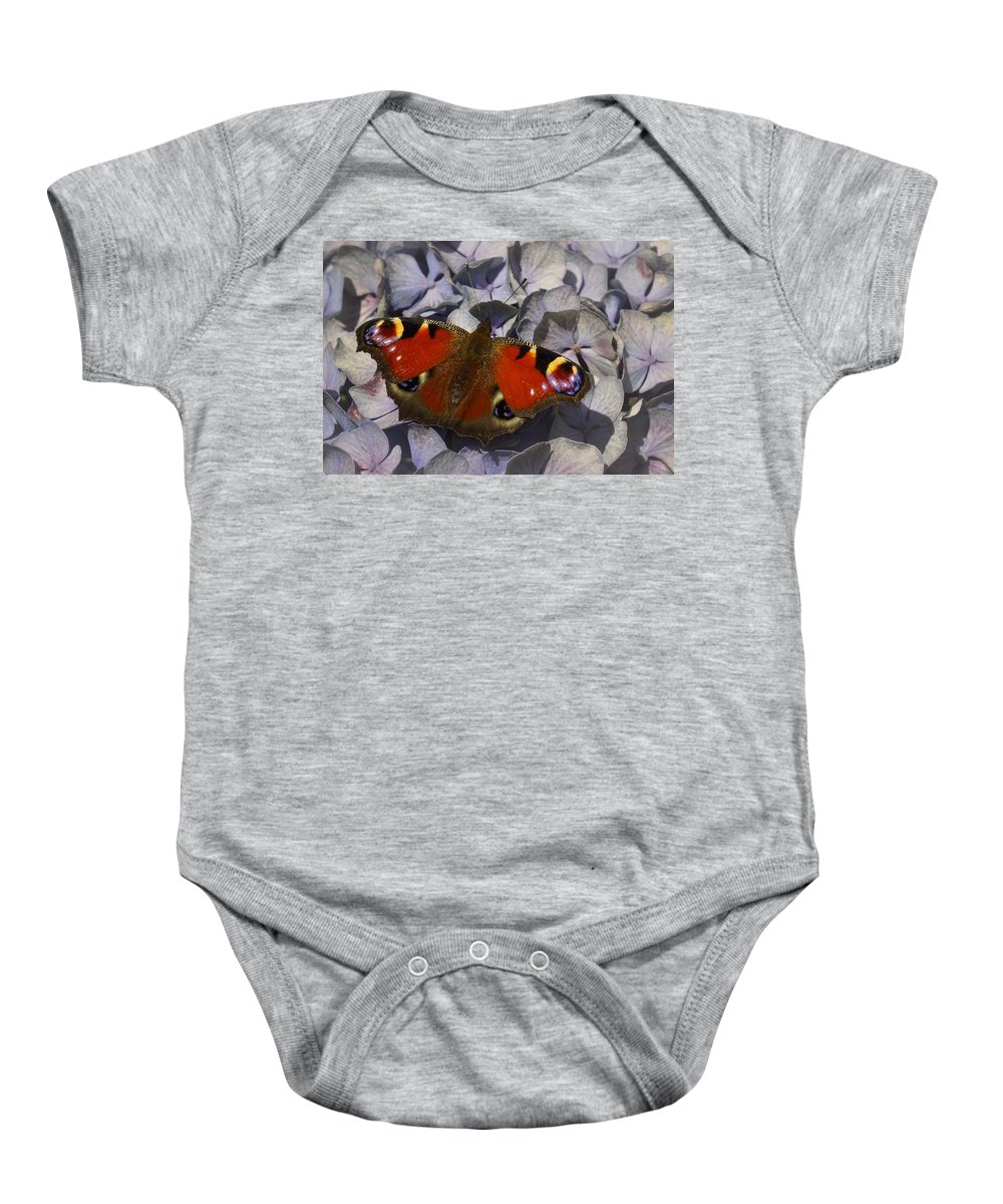 Animal Baby Onesie featuring the photograph Peacock Butterfly by TouTouke A Y