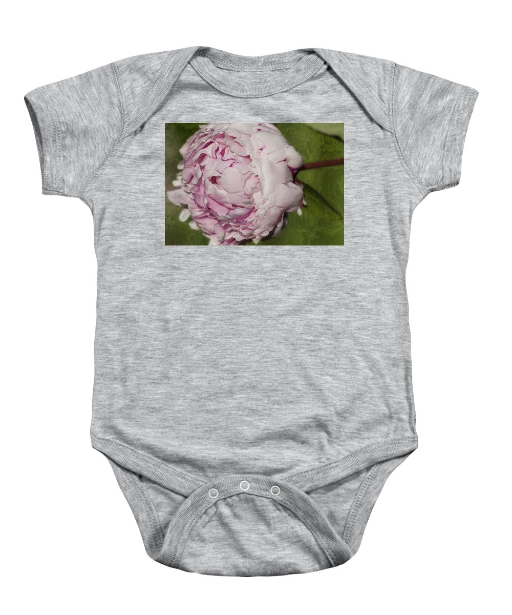 Peony Baby Onesie featuring the photograph Peony 2 by Belinda Greb