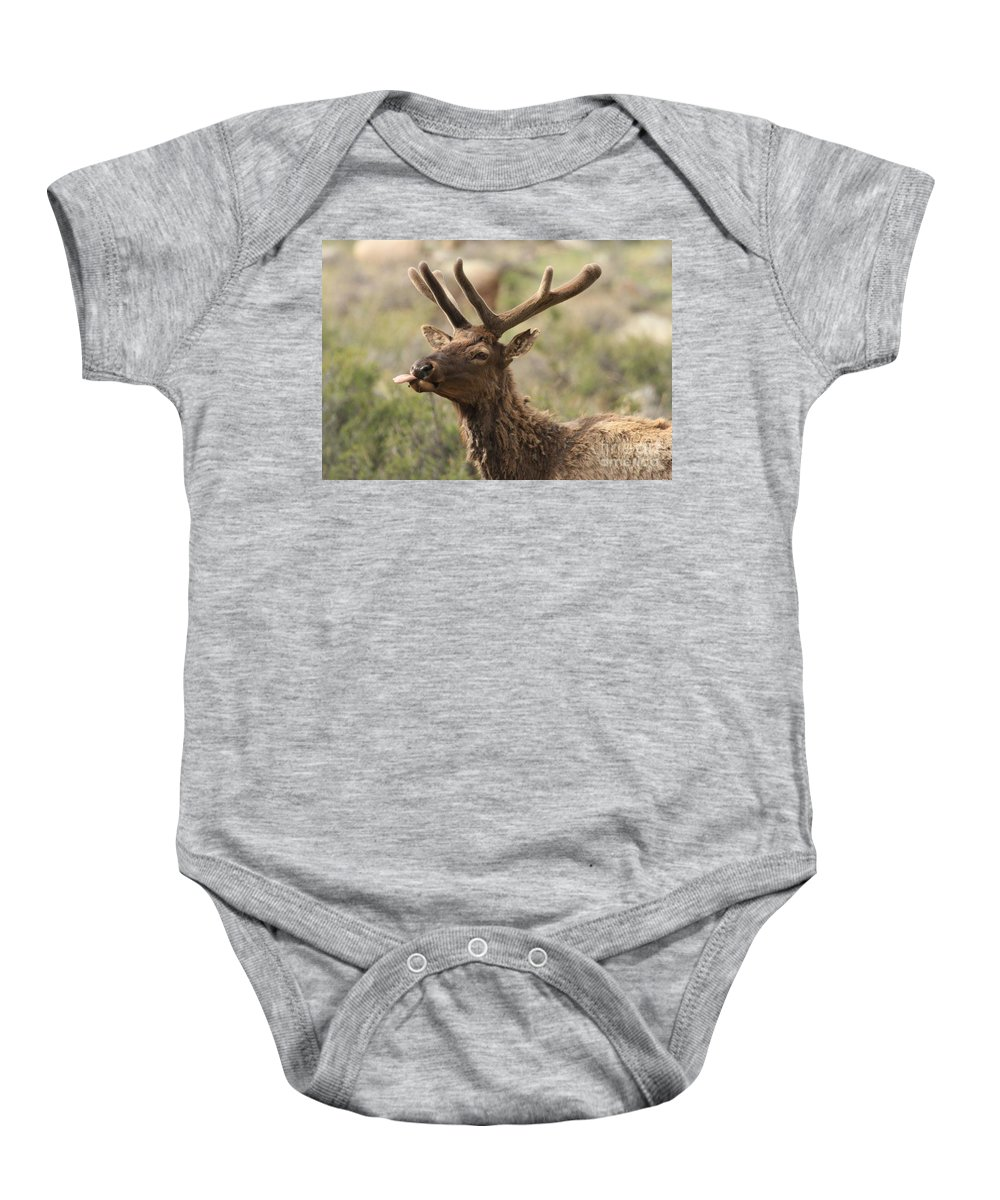 Rocky Mountain National Park Baby Onesie featuring the photograph Pfffft by Adam Jewell