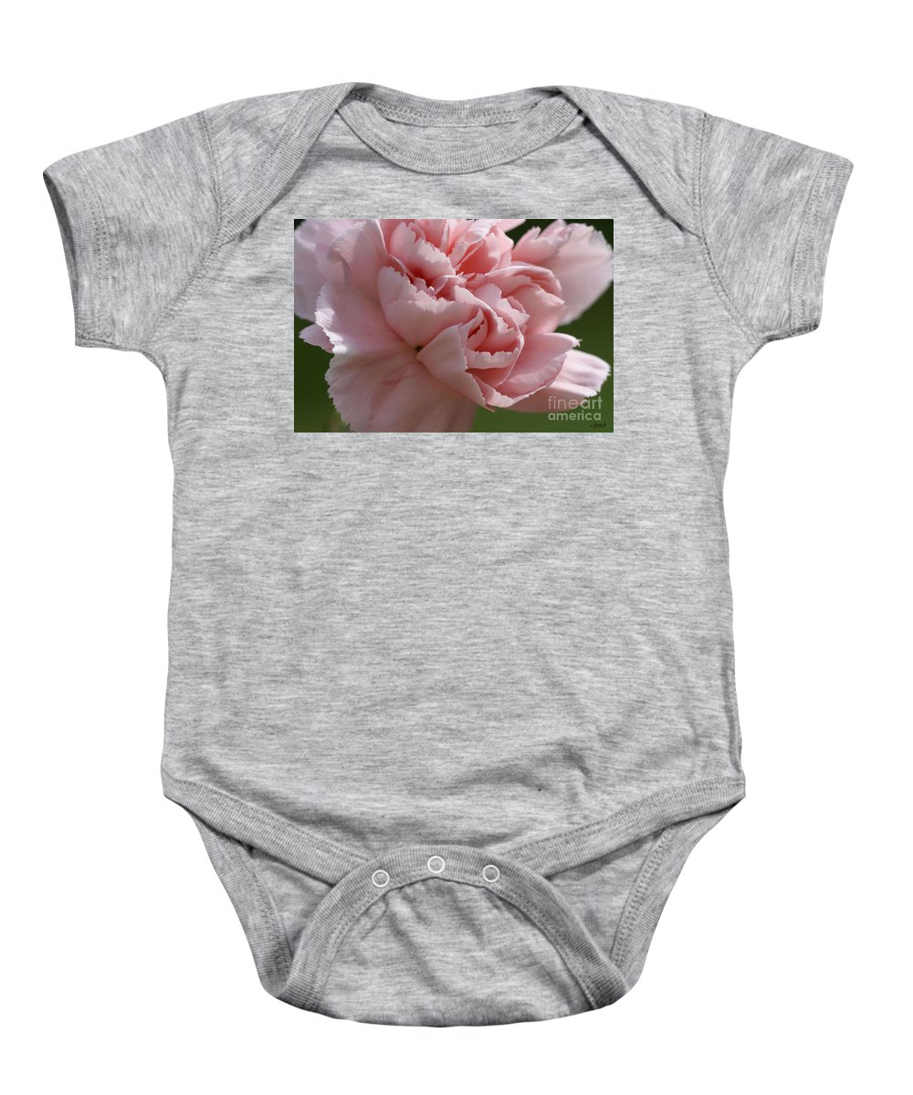Pink Baby Onesie featuring the photograph Pink Carnation by Carol Lynch