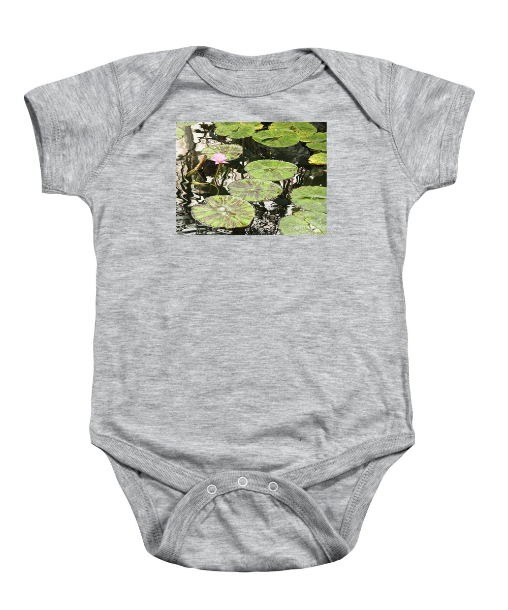 Pond Baby Onesie featuring the photograph One Pink Water Lily With Lily Pads by Carol Groenen